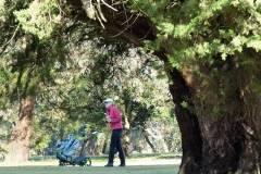 golf_gallery_05