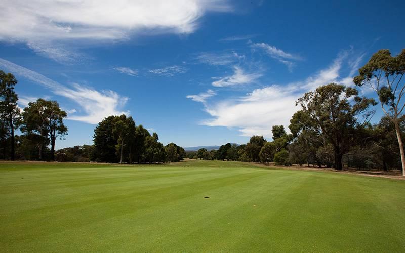 golf_gallery_08